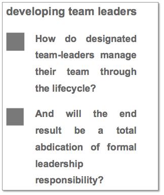 Developing Team Leaders